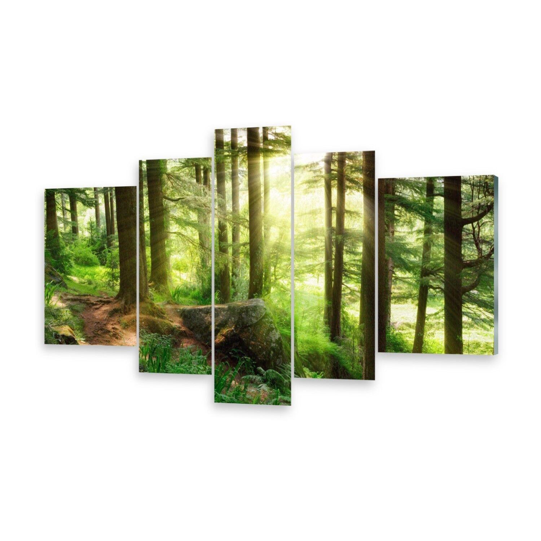 Las imágenes con varias partes cuadros de cristal imagen imagen imagen de muro bosque de niebla c84a3d