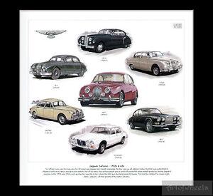 Jaguar-Car-Art-Print-XJ-Series-1-Mk7-S-type-Mk1-Mk2-MkII-240-340-420-1950s-1960s