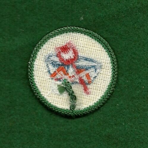 GREEN LOCAL LORE JUNIOR WORLDS TO EXPLORE VINTAGE GIRL SCOUT BADGE