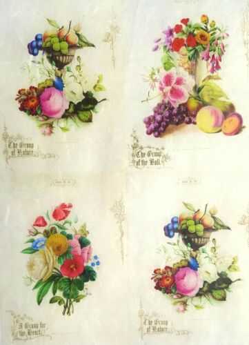Rice Paper for Decoupage Scrapbooking Sheet Craft Vintage Fruits Floral Collage
