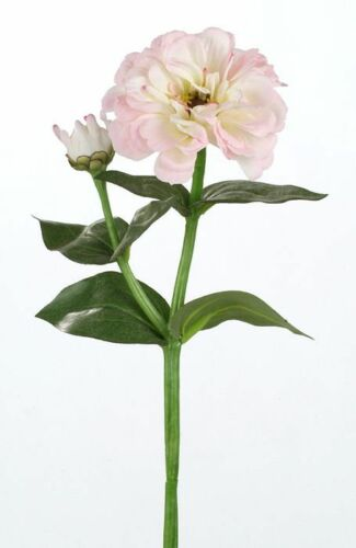 Pfingstrose Rose en Soie Fleur Art Fleur blanc crème rose 34 cm 181688 f12