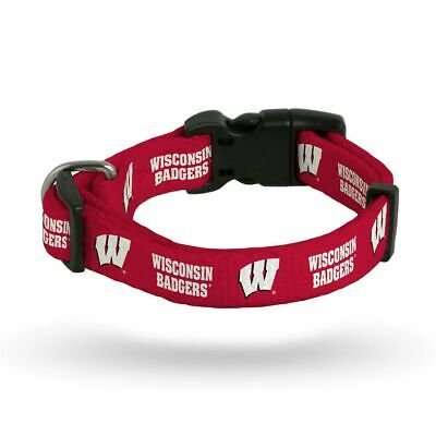 NCAA Wisconsin Badgers Team Pet Lead 1-inch by 60-inches