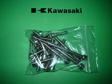 Kawasaki KH KH250 350 400 Engine SS Stainless Allen Screw Kit *UK FREEPOST*