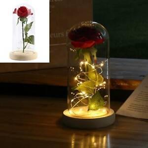 Dekor Rose Im Glas Led Leuchten Rose Licht Im Glaskuppel Ewige Blumen Geschenk Ebay