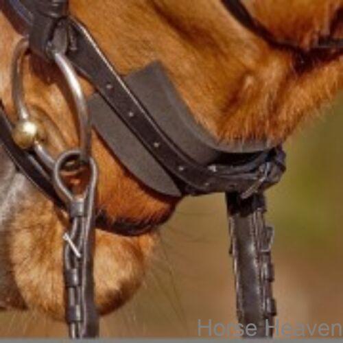 Kavalkade Kaval Soft Pads Noseband//Jaw//Bridle Pressure Protection