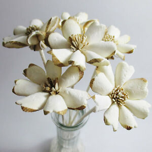 Plumeria Flower Sola Wood Reed Diffuser Craft Decor Home