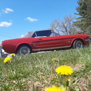 1966 Ford Mustang Noir