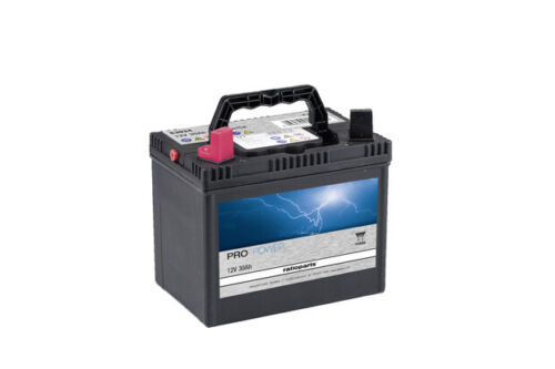 Rasentraktor YUASA 12V 30Ah Akku Batterie Starterbatterie f re Wartungsfrei