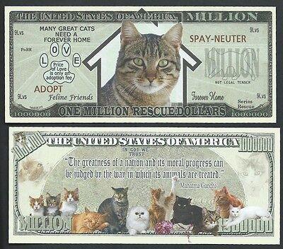Siamese Cat FREE SLEEVE Kittens Million Dollar Bill Funny Money Novelty Note