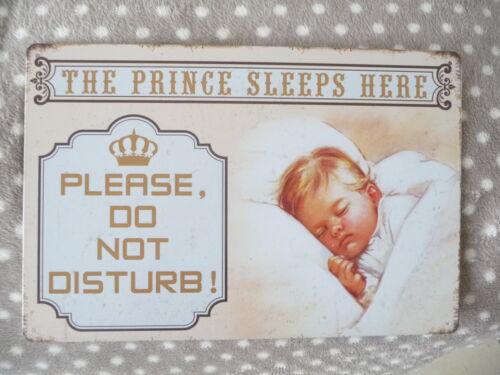 Shabby Blechschild Wandbild The Prince Sleeps Here 20 x 30cm Retro Antiklook NEU