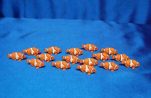 8-Mini-Clown-Fish-Favors-Mini-Good-Luck-Clownfish-Favors-Safari-Ltd