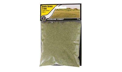 Miniaturwelten Woodland Scenics FS643 Tuft-Tac™ Gras Kleber für Landschaftsbau