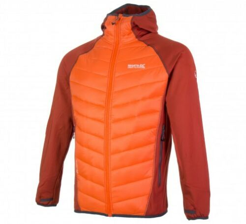 Hybrid Sizes Regatta Various Padded New Orange Men's Jacket Andreson Ii wqAqSCfx