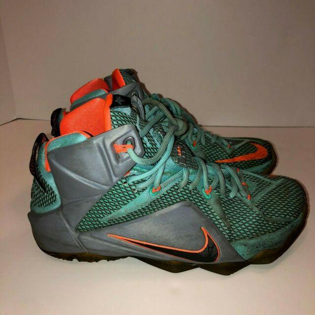 Nike Lebron XII NSRL Miami Dolphins