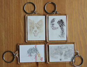 Border Collie Magnets (2 sizes), Keyrings or sets.  All with different drawings