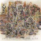 Humor Risk by Cass McCombs (CD, Nov-2011, Domino)