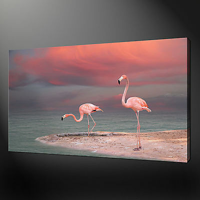 PINK FLAMINGOS CANVAS PRINT PICTURE WALL ART VARIETY OF SIZES AVAILABLE