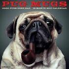 Pug Mugs 2017 Wall Calendar by Willow Creek Press