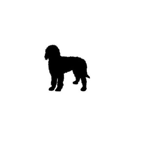 Idea cani proprietari Calzini Novità Regalo I Love labradoodle cane Calze