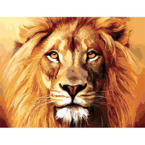 DIY Öl Malen nach Zahlen Löwe Tiger Zeichnen Leinwand Für Erwachsene Anfänger