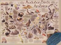 Jigsaw Puzzle Audubon Birds Of America 550 Pc