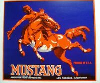 1930s Rare Nice Cowboy Mustang Horse Fruit Crate Label
