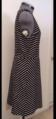 NWT J.CREW Stripe Ponte Dress