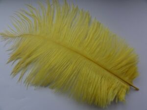 10-Yellow-Natural-Ostrich-Feathers-10-12-Inches-25-30cm
