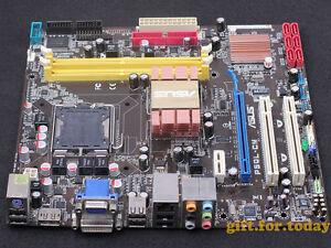 Asus P5QL-CM Intel Chipset Windows 8 X64