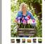 MIX-100-seeds-colorful-Hyacinth-Bonsai-perennial-Hyacinth-potted-plant-houseplan thumbnail 1