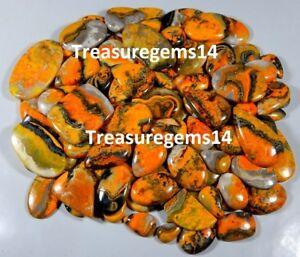 250-CT-WHOLESALE-LOT-NATURAL-BUMBLE-BEE-JASPER-MIX-CABOCHON-INDONESIA-GEMSTONES