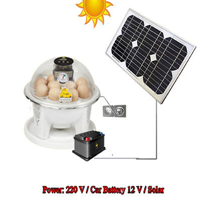 10 Egg Chicken Incubator Digital Fully Automatic Battery Solar Powered Ebay