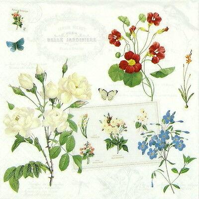 4x Paper Napkins for Decoupage Decopatch Vintage Naturalism