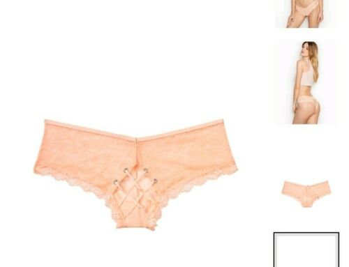 Vs dream angel cage back Cheeky Panty BRAND NEW SIZE small