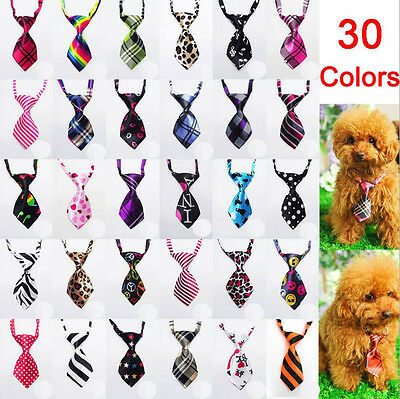 10 Pcs Dog Ties Clothing Cat Pet Pre-tid Tie Necktie For Grooming Store Puppy