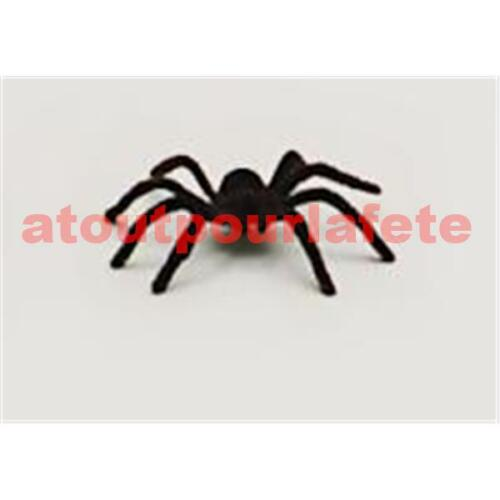Araignée Tarentule Velue Insecte,Magie,Sorciere,Sorcellerie,Halloween,Horreur