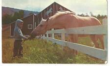 Postcard Elk Mountain Union Dale Pa Village of 4 Seasons Resort Uniondale horse