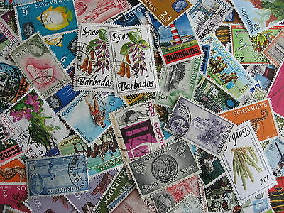 Collection Breakup Some Mixed Condition Barbados 70 Different To 2005