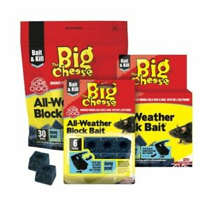 6x The Big Cheese All Weather Block Bait 30x10g - STV213