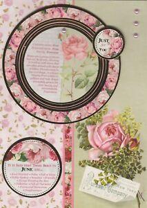 Image Is Loading Summer Birthday Cards Handmade June July August Flowers