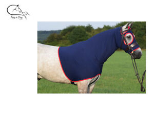Four Way Stretch Neck Rug Horse Pony