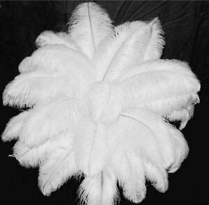 Free shipping 50pcs 10-12inches/25-30cm white ostrich feathers decor wedding