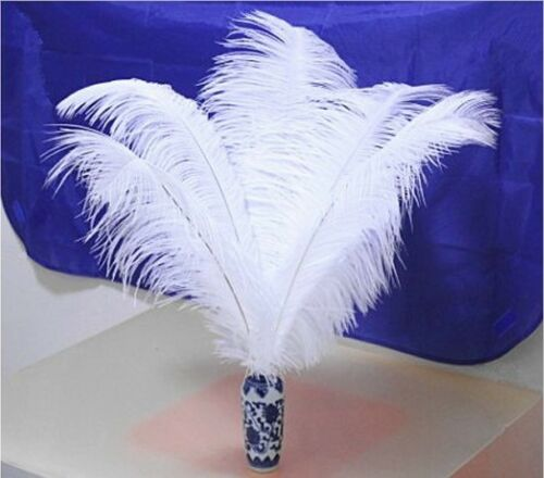 Pretty 10//20//50 pcs ostrich feathers 6-30 inches 15-75 cm multicolor optional