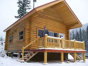Image Is Loading Log Cabin Kit