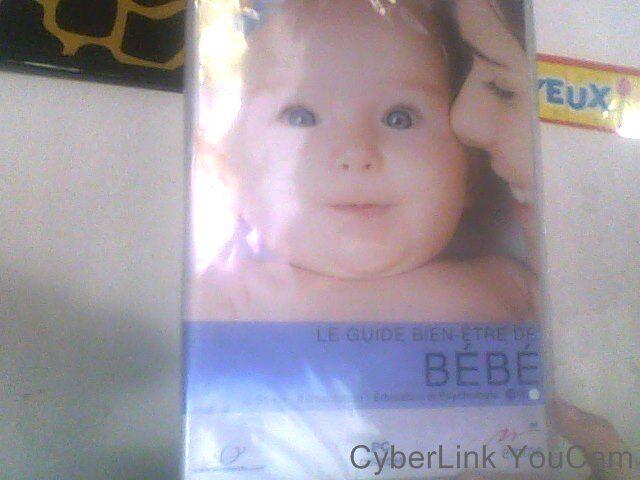 PC cd Rom Le guide bien - etre de bebe