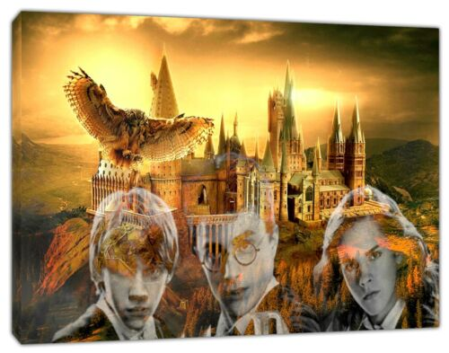Harry Potter Movie Picture Photo print On Framed Canvas Wall Art home Decoration