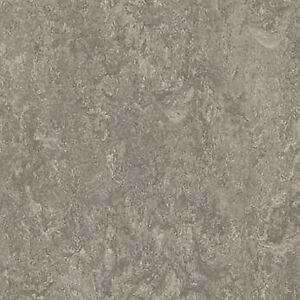 Forbo Marmoleum Real Linoleum Sheet Flooring Natural Lino Serene