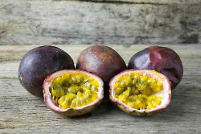 Painstaking Sweet Granadilla 100 Seeds Passiflora Ligularis Grenadia