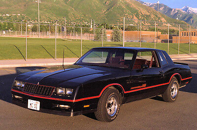Ss Monte Carlo >> Monte Carlo Ss 85 86 Body Stripes Decals Oem Replacement Orange Red Burg Ebay