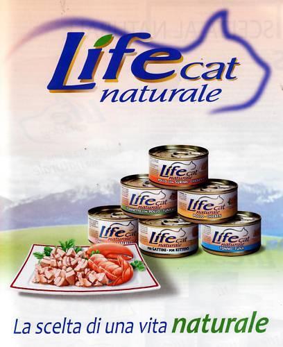 72 scatolette lifecat umido per gatto 70 gr   mix gusti al naturale